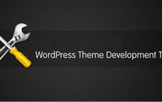 Hire freelance wordpress developer