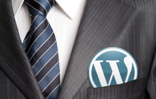 freelance wordpress developer india